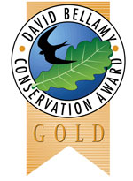david_ballamy_award_gold